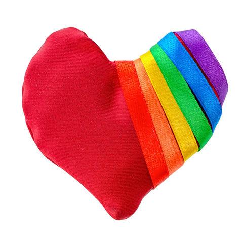 Serving LGBTQIA+ Survivors: Direct Service Practices
