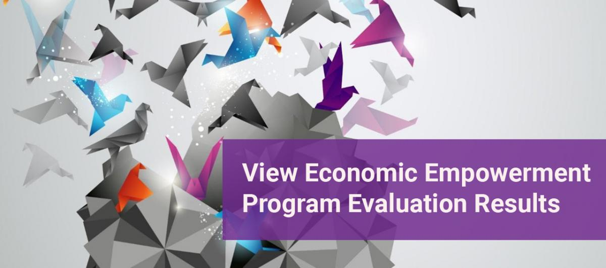Economic Empowerment Evaluation Results